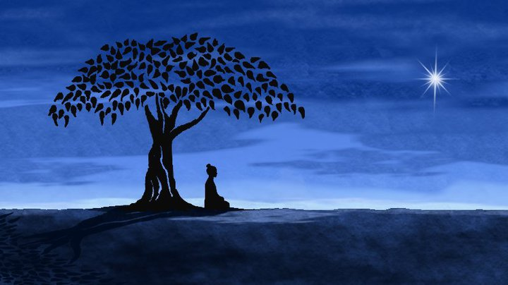 woman-meditates-tree
